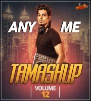 Any Me - Tamashup Vol. 12