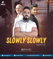 SLOWLY SLOWLY DJ SHAD BOUNCE MIX