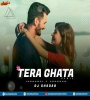 TERA GHATA (MOMBAHTON REMIX) DJ SHADAB