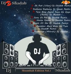 Sanu Ek Pal Chain Dj Shadab Remix