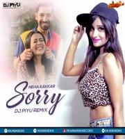 NEHA KAKKAR - SORRY ( BHANGRA MIX ) - DJ PIYU