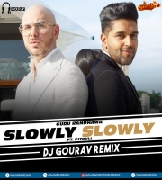 Slowly Slowly (Remix)  Guru Randhawa ft. Pitbull - DJ Gourav