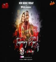 Temporary Pyar Remix Dj Rink x Dj Pawas