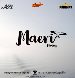 Audio Punditz x DJ Prabhat - Maeri Mashup