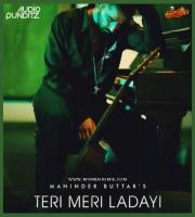 Tere Meri Ladayi (Mashup) Audio Punditz