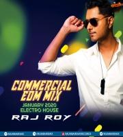 COMMERCIAL EDM MIX JANUARY 2020 - ELECTRO HOUSE - DJ RAJ ROY