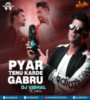 Pyaar Tenu Karde Gabru (Remix) - DJ Vishal