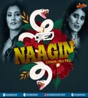 Naagin (Remix) - DJ Tej