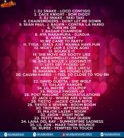 14 - She Move her Booty Like - DJ Nash x Shameless Mani SmashUp