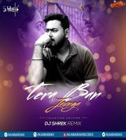 Tera Ban Jaunga Remix - DJ Shrek
