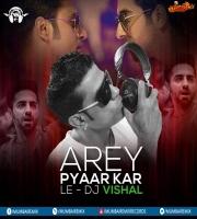 Arey Pyaar Kar Le - DJ Vishal Remix
