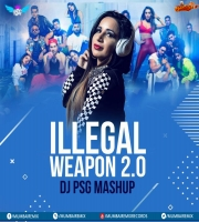 Illeagal Weapon 2.0 (Mashup) - DJ PSG