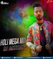 Holi Mega Mix (Non-Stop) DJ AKSHAY
