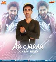 Aa Jaana (Remix) - DJ Krav