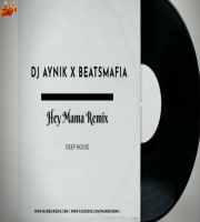 HEY MAMA Deep House Remix DJ AYniK X BEATSMAFIA