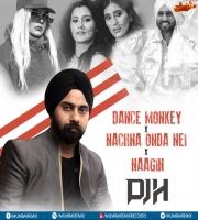 Dance Monkey Vs Nachna Odna Nei Vs Naagin (Dance Mix) - DJ H