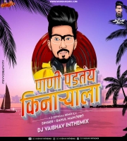 Paani Padatay Kinaryala  Rahul Naik DJ Vaibhav In The Mix  2020