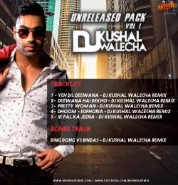 EK PAL KA JEENA - DJ KUSHAL WALECHA REMIX